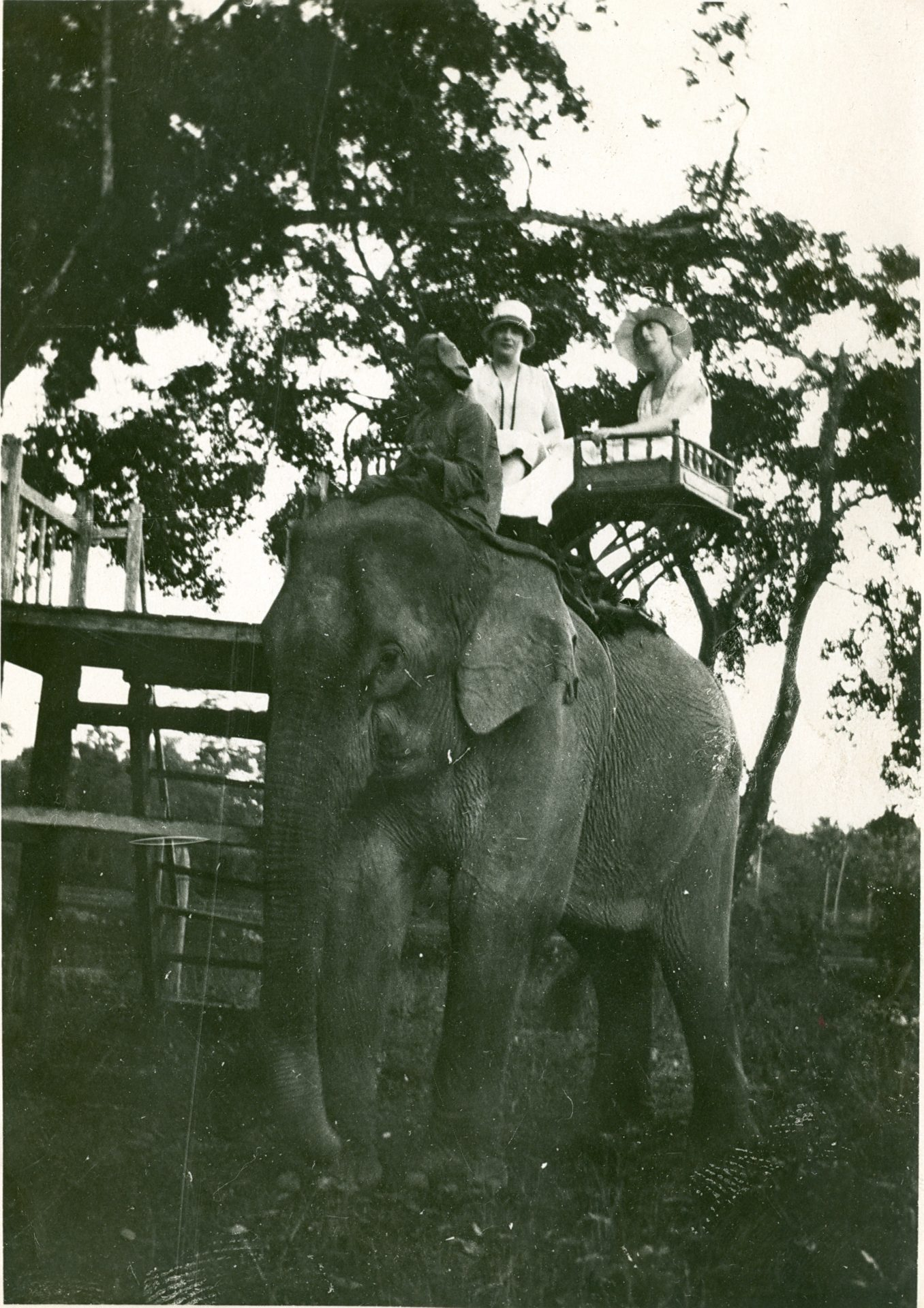 Une promenade à éléphant. Il pourrait s'agir de Marguerite Migeot et de Mme Première Varenne- Angkor Vât - Septembre 1927
